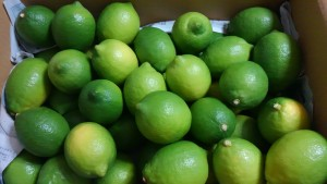 グリーンレモン2